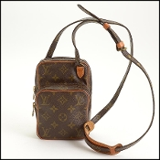 Louis Vuitton LV Monogram Amazone Mini Crossbody Bag